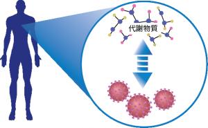 Metabolite x Virus